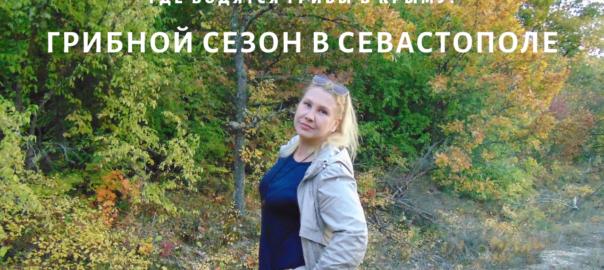 В Крым на ПМЖ: Грибной сезон в Крыму. Где искать грибы в Севастополе?